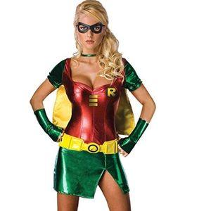 Small 2 4 6 DC Robin Secret Wishes Costume